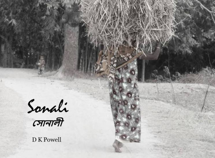 sonali-by-ken-powell-2016-bilingual-version-cover-1